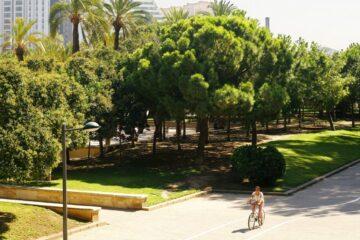 viaggiare a valencia spendendo poco - bici sul turia